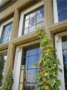 Window Cleaning Period windows in Bath